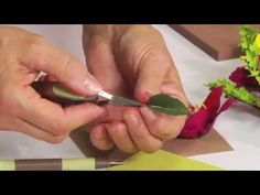 How to Use Sizzix Thinlits Clematis Flower Die. http://www.ucutathome.com/store/cat/Sizzix/id/37