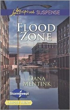 Flood Zone by Dana Mentink (2014,Large Type)