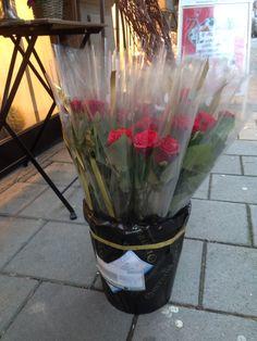 Lagde 22 enslige roser med propp pakket i cellufan