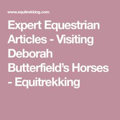 Expert Equestrian Articles - Visiting Deborah Butterfield's Horses - Equitrekking