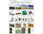 Grasslands Vocabulary Set – Vocabulary Set for Grasslands