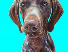 Dog Painting – German Shorthaired Pointer, Tully