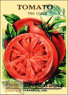 vintage tomato can labels - Google Search More