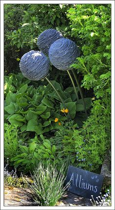 Slate Alliums By Joe Smith ~ this bed is so full of plants it would be hard for a weed to squeak through :)