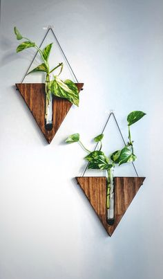 Indoor wall planter / Wall decor / handcrafted decor / timber vase / wall hanging / propagation station/ wooden vase - Home Decor House Plants Decor, Plant Decor, Diy Wanddekorationen, Vase Crafts, Wooden Vase, Wooden Wall Decor, Wall Wood, Decoration Originale, Hanging Plants