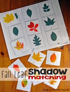 Fall Leaf Shadow Matching: Free Printable from Totschooling Autumn Activities For Kids, Pre K Activi Fall Preschool Activities, Montessori Activities, Preschool Math, In Kindergarten, Classroom Activities, Preschool Theme Fall, Preschool Printables, Tree Study, Autumn Theme