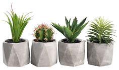 Kunstig plante TORGEIR assortert | JYSK