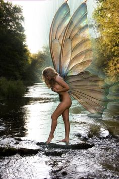 倫☜♥☞倫 Faery wings....♡♥♡♥♡♥Love it