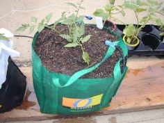shopping bag container
