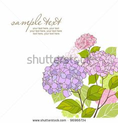 card with stylized hydrangeas and text by lozas, via Shutterstock