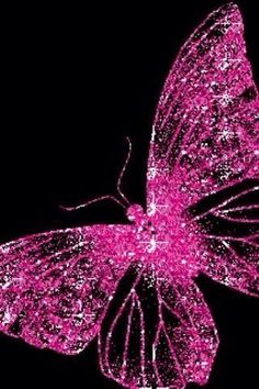 Pink Love, Pretty In Pink, Hot Pink, Pink Black, Perfect Pink, Bright Pink, Cute Butterfly, Beautiful Butterflies, Butterfly Canvas