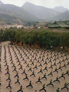 a school of martial arts