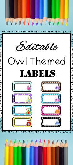 Colorful, editable owl labels. Use for flash cards, name tags, word wall, spelling words, vocabulary words, book bin labels