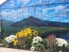 My sister-in-law, Joy, had an art student paint this mural on her garage in upstate NY.  Loved it!
