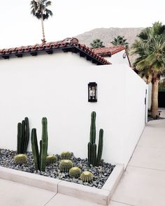 cactus minimalis landscaping | tour of la serena villas palm springs on coco kelley