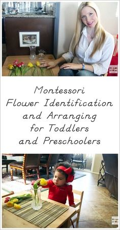 Resources and YouTube video with lots of information and ideas for Montessori flower identification and flower arranging for toddlers and preschoolers. Part of the 12 Months of Montessori Learning Series.