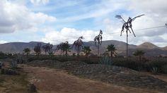 adobe valle de guadalupe