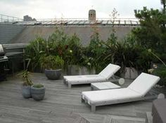 Shoreditch roof garden