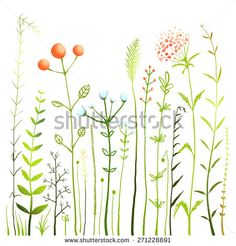 Flowers and Grass on White Grassland Collection. Rustic colorful meadow growth illustration set. Vector EPS10.