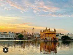 Harmandir Sahib, Golden Temple Amritsar, Krishna Art, Sculptures, Religion Quotes, Quotation, Temples, Honey, Wall Decor
