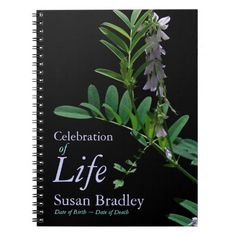 Indigo 1 Floral Photography - Funeral Guest Book