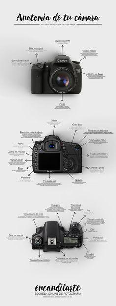 ENCANDILARTE Escuela Online de Fotografía #canon #camara #fotografia…