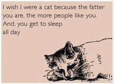 i'm more of a dog person but can defintely relate to this sentiment and it would be cool to have a tail. my hat is off to you mr smooge with your fluffy fat self and curly cue tail
