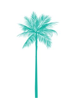 Turquoise Palm Tree Print Teal Palm Tree by MelindaWoodDesigns