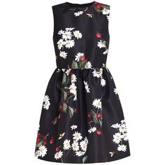 REDValentino Daisy Cherry Dress ($560) ❤ liked on Polyvore featuring dresses, black, daisy-print dress, floral print mini dress, short sleeveless dress, crepe dress and flower print dress