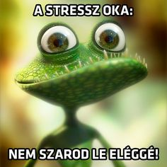 Frog-lizard Picture cartoon, lizard, frog) ★ Find more at… Frog Pictures, Pictures Images, Funny Pictures, Funny Pics, Hilarious, Cartoon Lizard, 3d Cartoon, Funny Lizards, Funny Animals