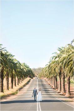 Saltram winery barossa ceremony wedding lavender photos  #Barossa #BarossaValley #Wedding #Photography #SouthAustralia #Adelaide