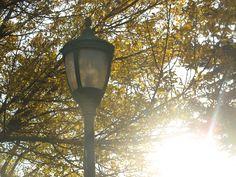 Door County Wisconsin, Fall Door, Best Vacations, Cool Pictures, Door County Wi