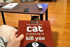 Page 1. If you have a cat, it is in fact plotting to kill you. Page 2. Get your affairs in order. Page 3. The End