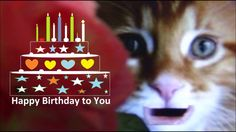 Happy Birthday Song | Happy Birthday To You for Kids and Children's
