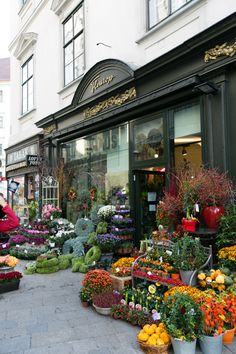 Flower Shop in Vienna Austria.photography by emilia-jane. Visit Austria, Austria Travel, Beautiful Flowers, Beautiful Places, Exotic Flowers, Amazing Places, Flower Market, Flower Shops, Shop Around