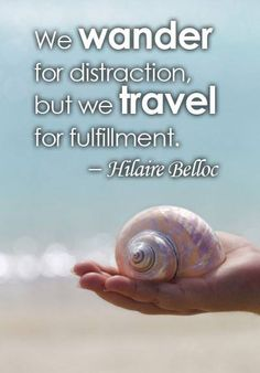 """""""We wander for distraction, but we travel for fulfilment."""""""