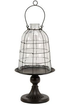 Lyra Caged Glass Dome HomeDecorators.com