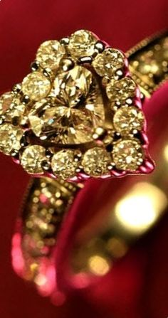 red & gold ✿⊱╮