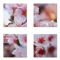 Magneto porta-copos Cherry Blossom