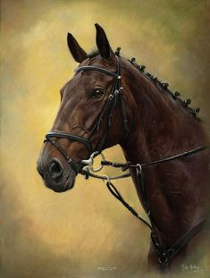Mike Haken - The Horseman's Artist - Stunning Horse Portraits & Dog Portraits From Yorkshire