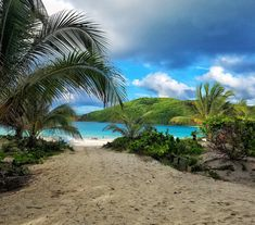 [OC] Paradise awaits beyond the palms. Beautiful Flamenco beach (3024x2660)   landscape Nature Photos