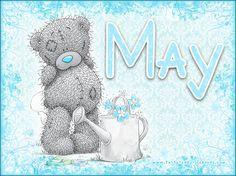 May - Tatty Teddy