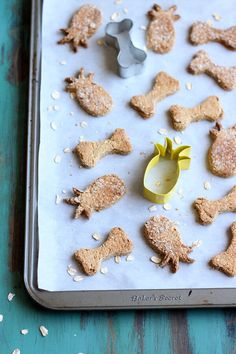 These Tropical Pineapple Coconut Dog Treats will send your pups on a tropical vacation! A simple recipe made with fresh pineapple and coconut oil. | wildwildwhisk.com