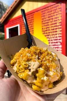 From Mickey-Shaped Macarons to the Carbonara Garlic Mac & Cheese, there are so many great bites and brews to discover at the Disney California Adventure Food and Wine Festival! Cheeseburger Mac And Cheese, Mac Cheese, Ghost Peppers, Disney California Adventure, Disney Dining, Wine Festival, Disney Food, Wine Recipes, Macarons