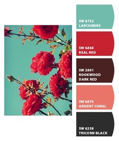 Turquoise and Red  Paint colors from Chip It! by Sherwin-Williams, love this color combo.