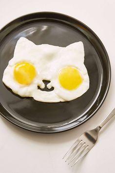 Kitty Egg Shaper