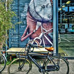 'Street art in Amsterdam Noord near Kromhouthal.                               ' on Picfair.com