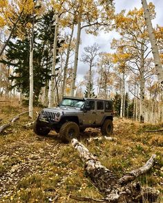 Nothing like a little Jeep Therapy! http://amzn.to/2jmkztD #afflink