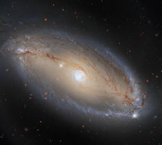 Hubble Views a Galaxy with More than Meets the Eye | NASA Types Of Galaxies, Other Galaxies, Hubble Space Telescope, Space And Astronomy, Cosmos, Field Camera, Nasa Goddard, Electromagnetic Spectrum, Spiral Galaxy