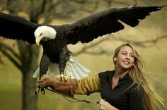 Funny pictures about Beautiful girl and her pet eagle Thunder. Oh, and cool pics about Beautiful girl and her pet eagle Thunder. Also, Beautiful girl and her pet eagle Thunder photos. The Eagles, Bald Eagles, Beautiful Birds, Beautiful World, Animals Beautiful, Simply Beautiful, Gorgeous Girl, Animals Images, Cute Animals